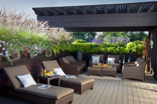 ý tưởng thiết kế sân vườn